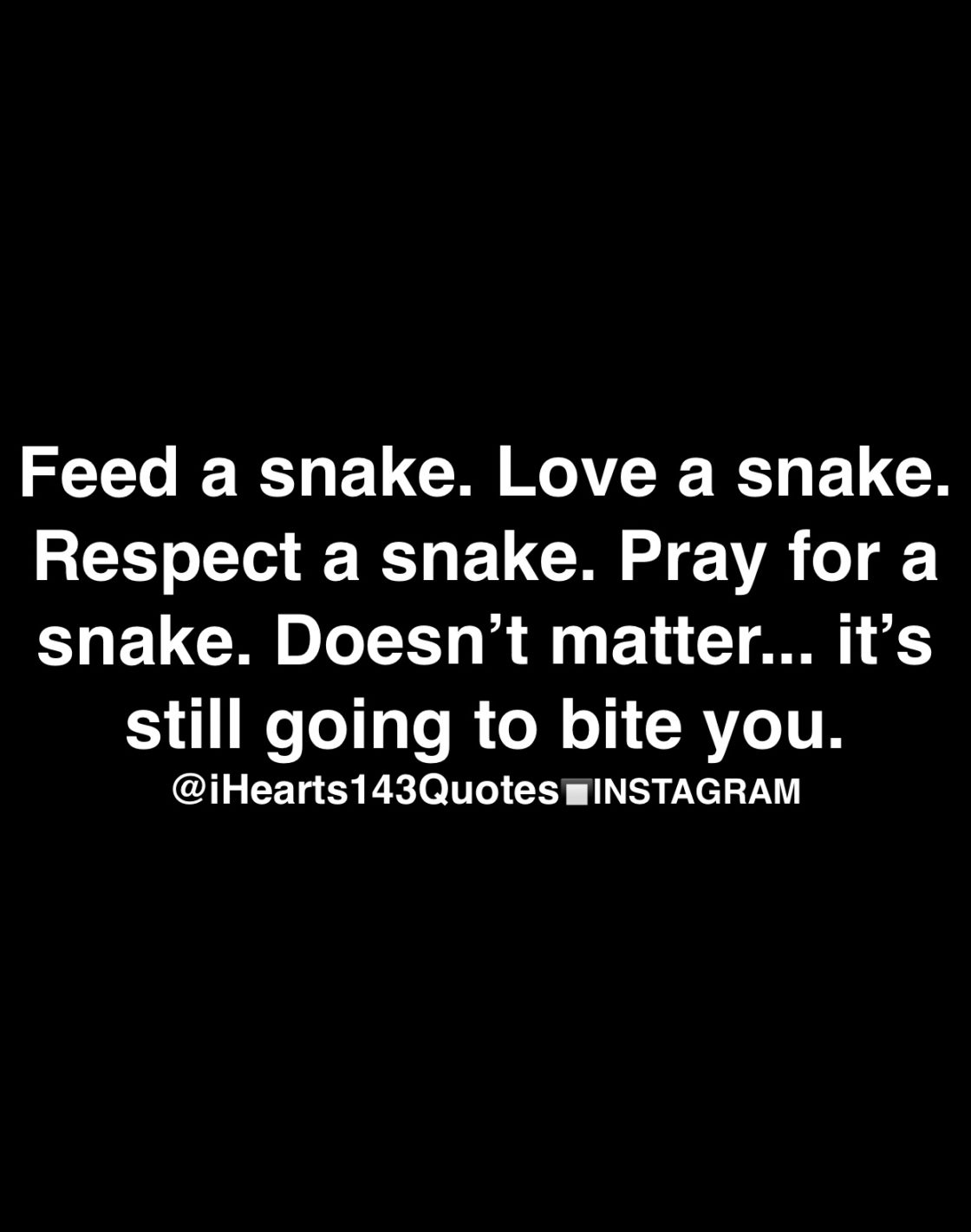 Snake Quotes Daily Motivational Quotes – iHearts143Quotes Snake Quotes